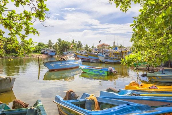 tradisjonelt malte fiskebåter i den gamle havnen i Negombo / Sri Lanka