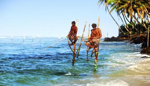 Styltefiskere i aksjon