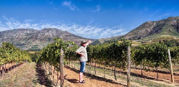 Sor afrika vin vinranker 1170x570