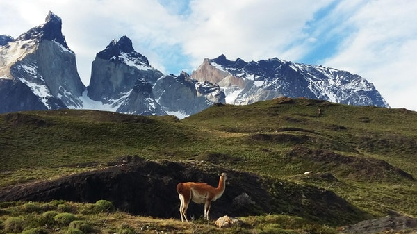 Patagonia 16