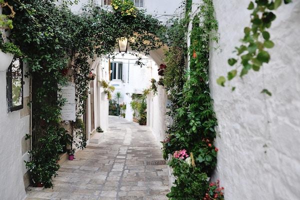 vakker utsikt over naturskjønne smale smug med planter, Ostuni, Apulia, Sør-Italia