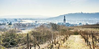 Byen Rudesheim og Rhinen på en kald vintermorgen