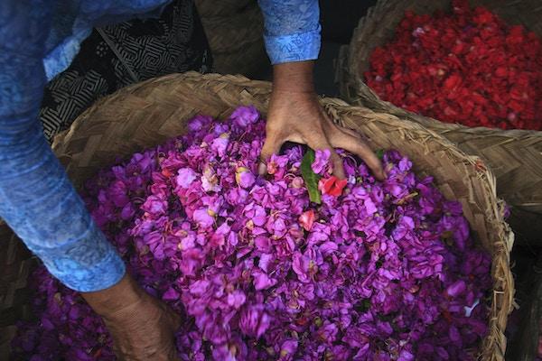 Istock 000042407720 blomster bali indonesia