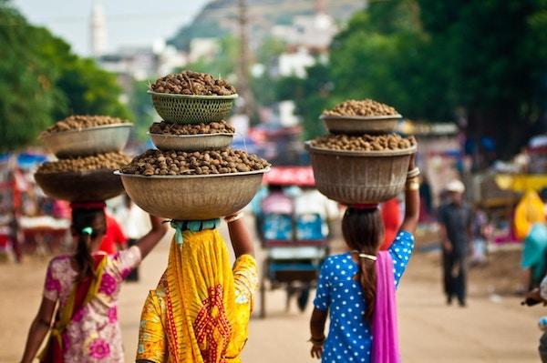 Sari iført kvinner som har møkk på hodet