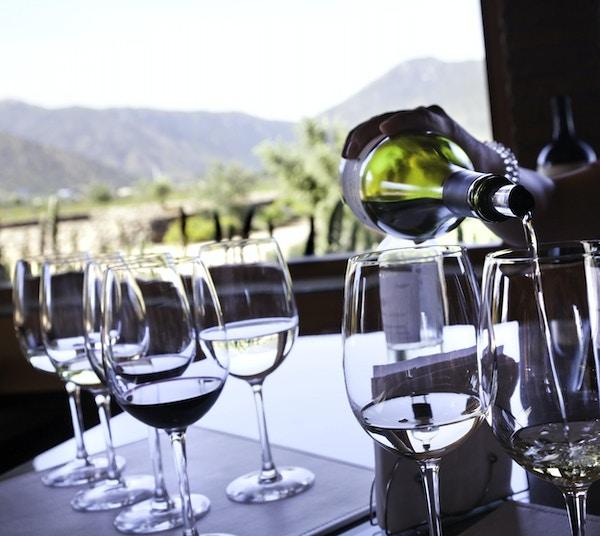 Røde og hvite viner ved en vingård i Chile, Sør- Amerika