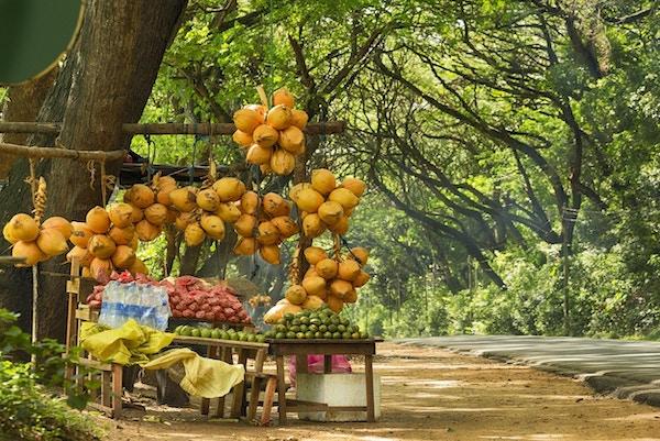 Sri Lankas fruktleverandør bod på vei fra Negombo til Kandy.