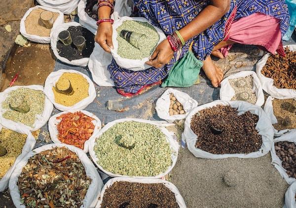 nøtter, frø og krydder til salgs på Chadni Chowk kryddermarkedet