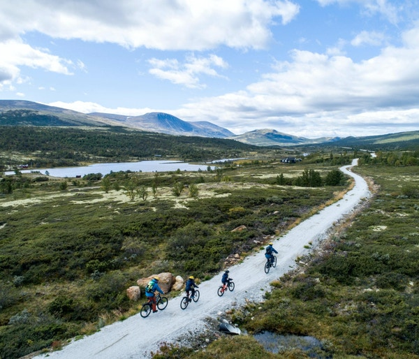 Familiesykling med elektriske sykler og guide på en sti på Dovre