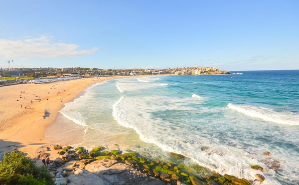 Utsikt over den vakre Bondi-stranden, Sydney
