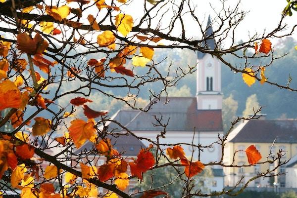 Landskapsavbildede grener av høsttre foran og ett kapell i bakgrunnen