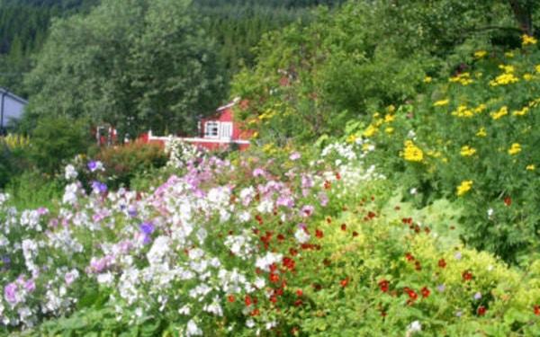 Litlehaug Urte- og Staudegård