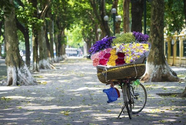 Selger sykkel med blomster på Hanoi street