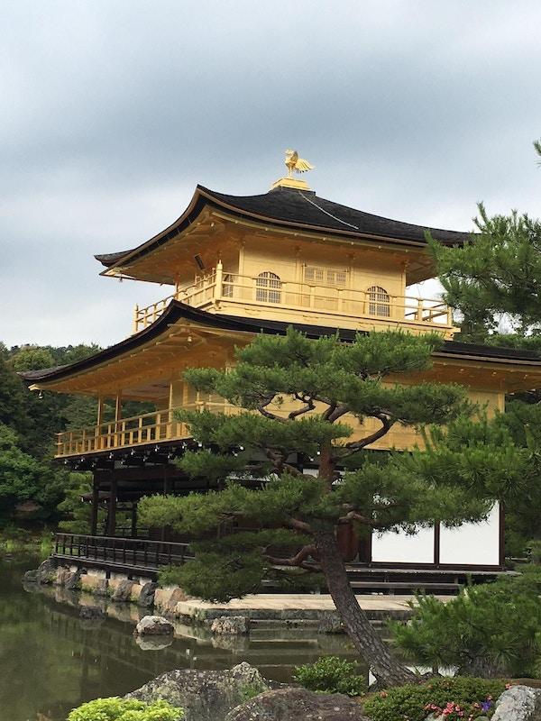 Kinkaku-ji i gull omgitt av vann