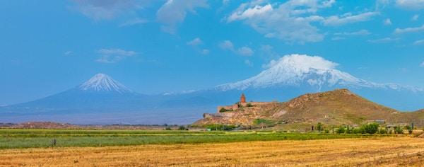 Druefelt i Araratdalen. Utsikt over Khor Virap og Mount Ararat