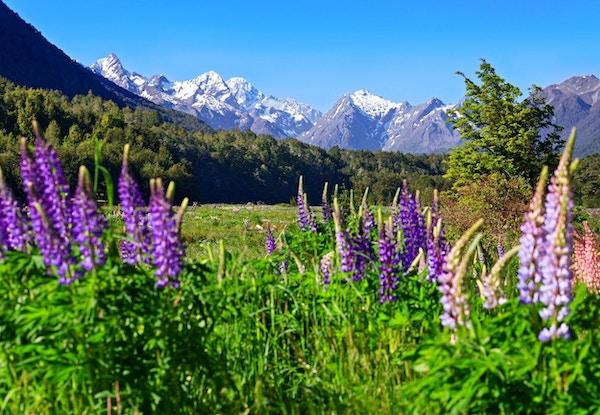 New Zealand landskap