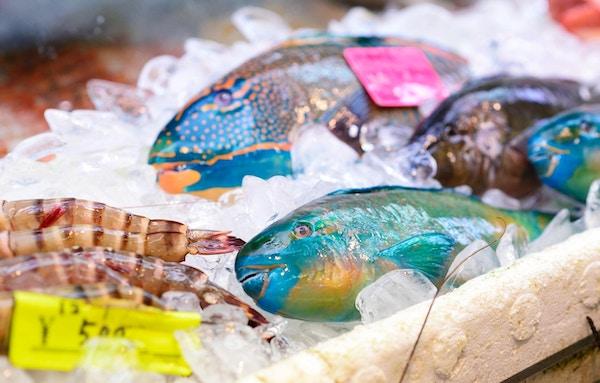 Fargerik fersk fisk ved en markedsbod.