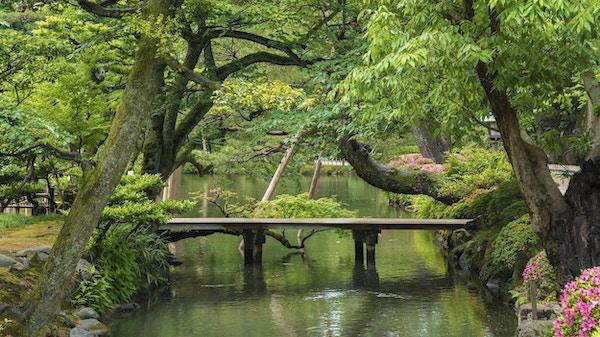 Japansk hage i Kanazawa, Japan
