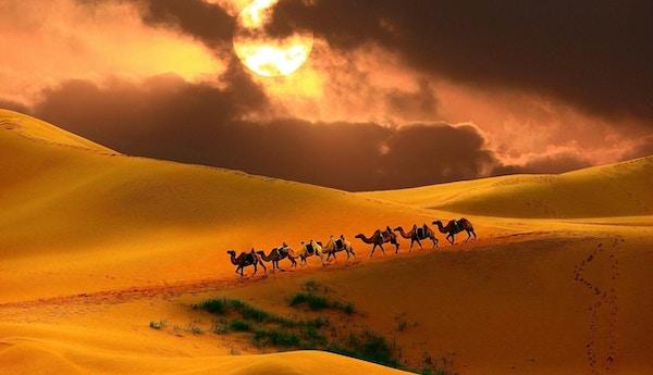 Campingvogn i ørkenen, Mongolia