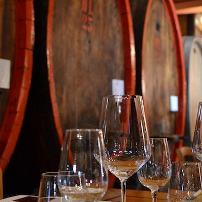 Barolo vin vandring 3