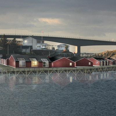 Langs sjøkanten i Lofoten