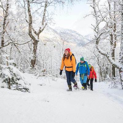 Tre mennesker på tur langs Kongevegen på vinteren.