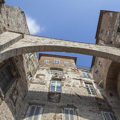 Steinbue i Perugia