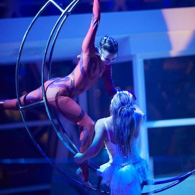 Cirque du soleil inspirerte show