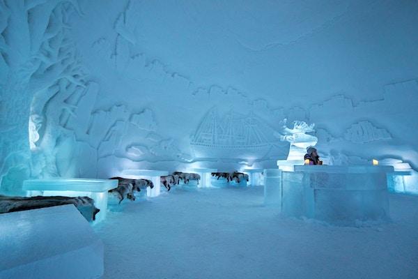 Isbaren i Tromsø Ice Domes.