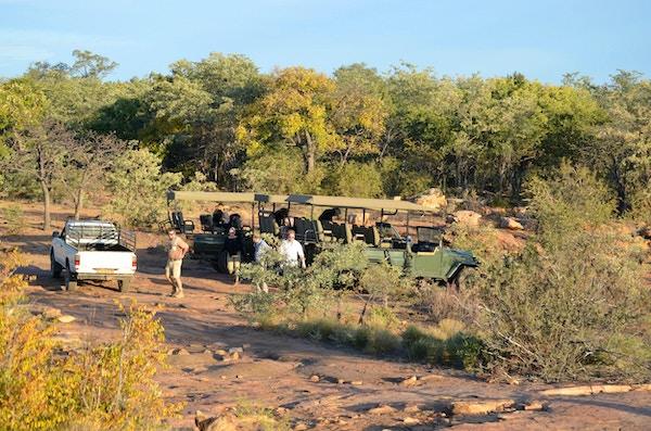 Safari i Sør-Afrika