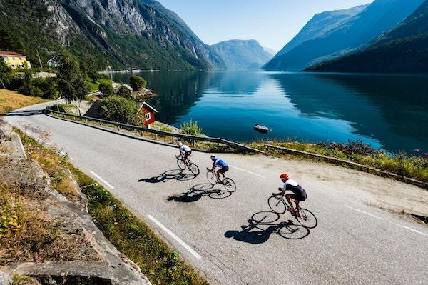 Fjord,vei,sykkel