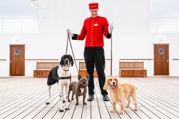 Bell boy med hunder på dekk på Cunard-skip.