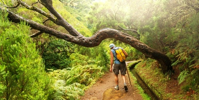 Fottur på Madeira