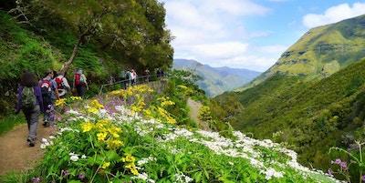 """Vannveiene eller """"levadaene"""" på Madeira er kjent for sin skjønnhet. Turveiene går gjennom vakker natur og bugnende blomsterdaler."""