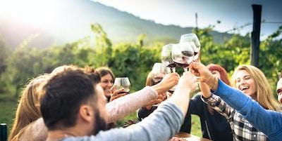 Venner som skåler med rødvin etter innhøsting