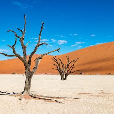 Deadvlei i Sossusvlei, Namibia