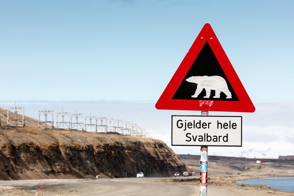 Varseltegn som indikerer at isbjørnadvarsel gjelder over hele Svalbard.