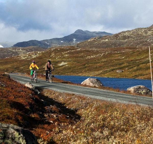 Natur, syklister