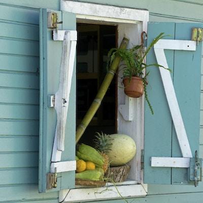 Frukt og grønt som hviler i vinduet