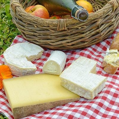 flere franske oster med epler og cider på gress