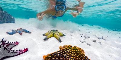 Voksen kvinne som viser fredsskilt mens hun snorkler rundt tropisk sjøstjerne.