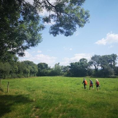 Tre mennesker vandrer gjennom en grønn eng med sekker på ryggen.