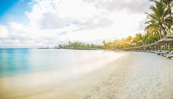 Lang, hvit sandstand med solsenger og palmer.