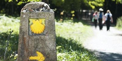 Way of St James skall- og pilemerker for pilegrimer til Compostela katedral, Galicia, Spania