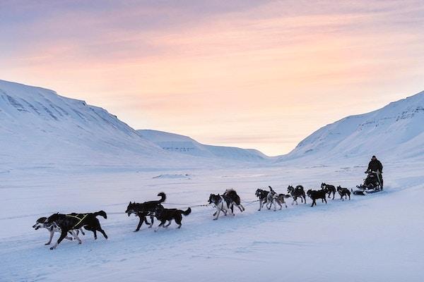 Hundespannstur på på Svalbard