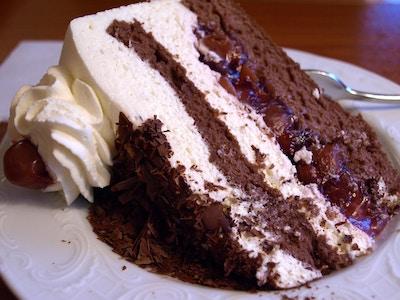 Sjokoladekake med pisket krem. Nærbilde.