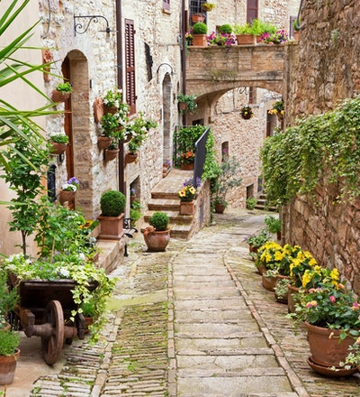 Smal gate i blomsterbyen Spello.