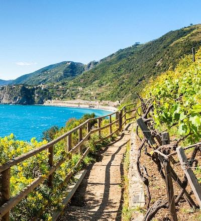 Sti langs Middelhavet, Cinque Terre i Italia.