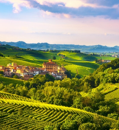 Langhe vingårder panorama, Barolo landsby, Unesco Site, Piemonte, Nord-Italia Europa.