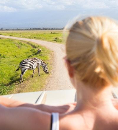 Kvinne på afrikansk villmarkssafari som observerer sebraer fra en safarijeep med åpent tak.