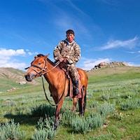 Mongolsk, rygg, rytter, eng, inn, bakgrunn.